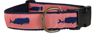 Whale Dog Collar and Leash on Coral