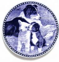Border Collie Puppy Danish Blue Plate