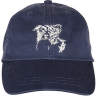 Border Collie Baseball Cap