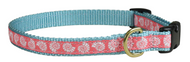 seashells dog collar