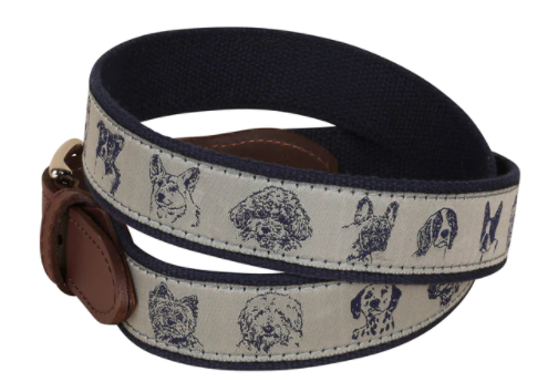 dog faces dog belt