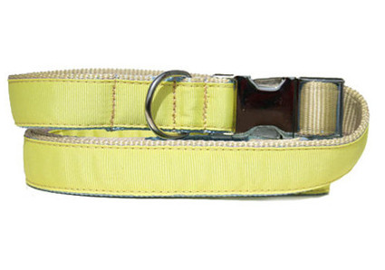 yellow urban leash