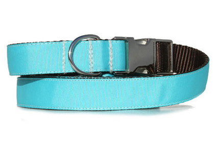 turquoise urban leash