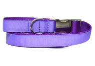 purple urban leash