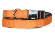 ginger urban leash