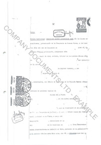 Example of an excerpt from a set of Argentina copy corporate documents.