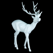 Elegant Deer in White Gloss