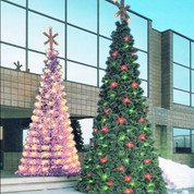 """Mountain Pine Closed Style Standard Base """"Spiral"""" Popup Trees"""
