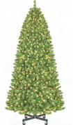 Pre-Lit Sequoia Slender Tree with Stand- With or Without Instant Shape Branches
