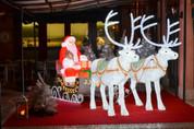 Santa Sleigh & 2 Reindeer