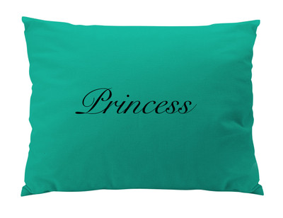 Dog Bed-Turquoise- Script Name