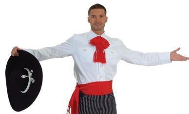 Mariachi, charro or folklorico shirt