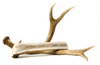 Extra Large Antler Chew