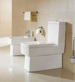 Modern Toilet Dual Flush One Piece - France