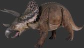 Triceratops Statue Life Size Huge 14 FT