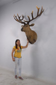 Grand Deer Stag Head Wall Mount