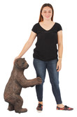 Grizzly Baby Bear standing Statue
