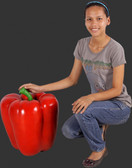 Large Red Bell Pepper Statue