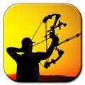 archery3-89843.jpg
