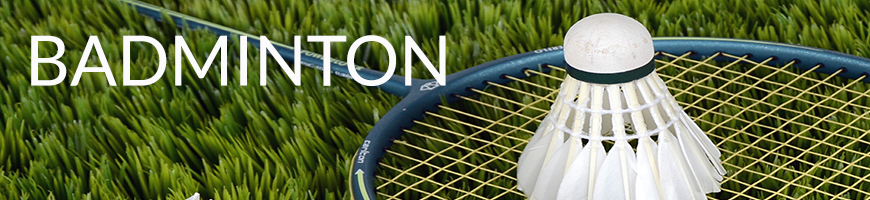 badminton-catogery-image.jpg