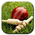 cricket-79348.jpg