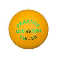 Special Club Cricket Ball