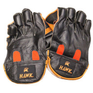 Hawk Cricket Wicket Keeper Gloves