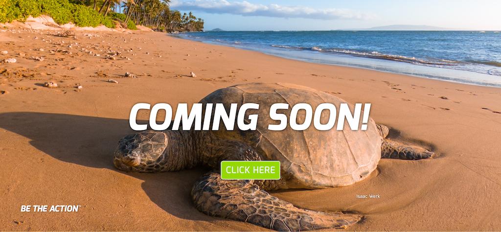 mt-eco-friendly-coming-soon-.jpg