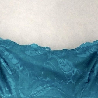 Rhonda Shear Size M One Size Lace Full Underwire Blue Bra Womens