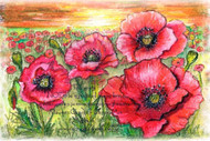 MC #205-2 Poppy Field