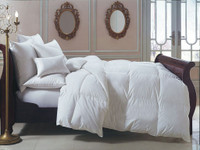 Bernina Year Round Down Comforter