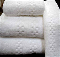 Viceroy 100% Cotton Towels / Case Pack of 12