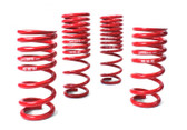 "Sport Springs for GT-R .75"" Drop Front and Rear  (Part No.PGP-SUS-500)"