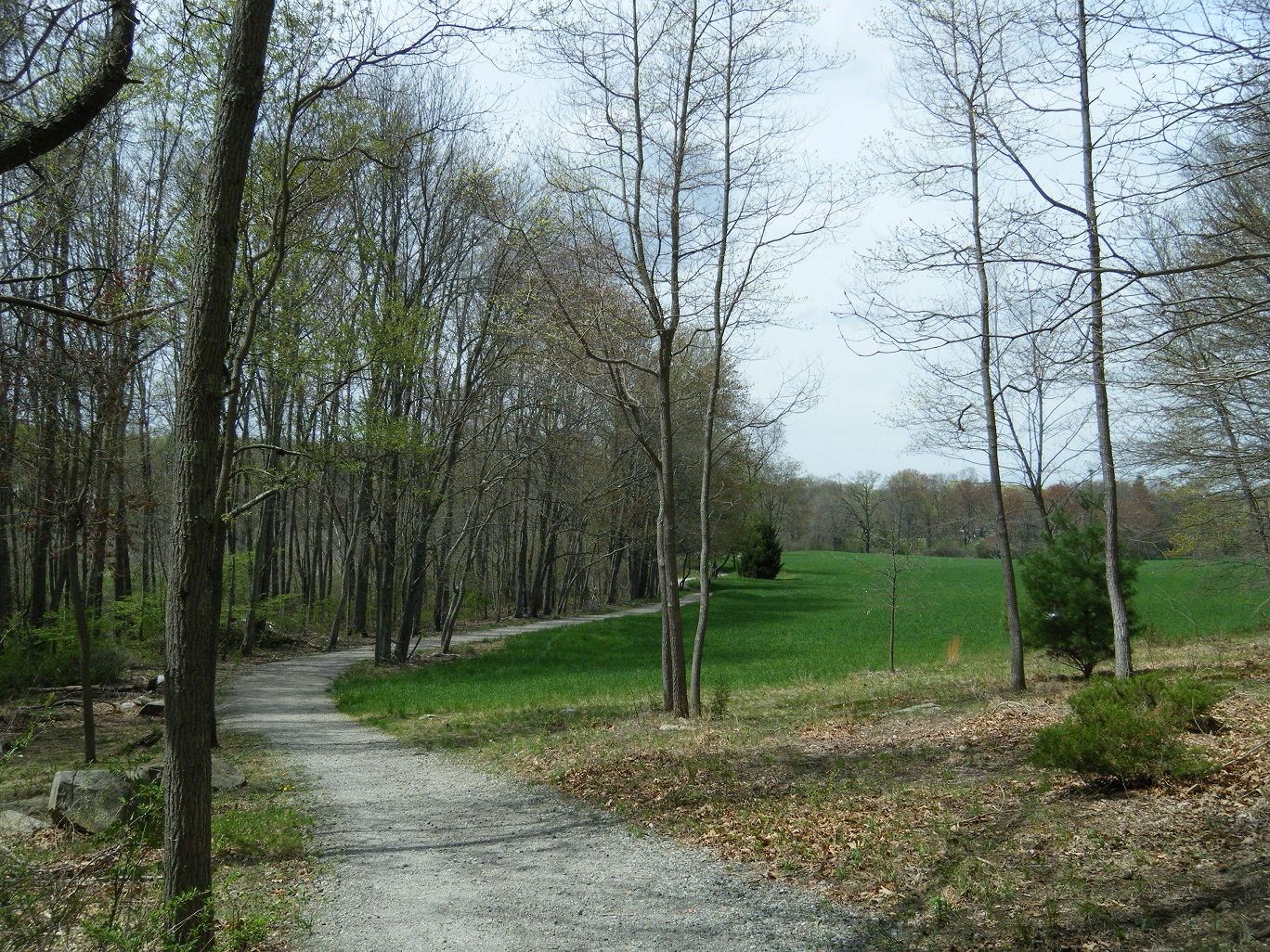 shelton-recreation-trail.jpg
