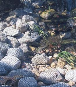 Aviary Pond Netting Light Knitted 28'x28'