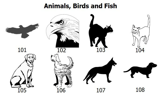 animal-graphics-1.jpg