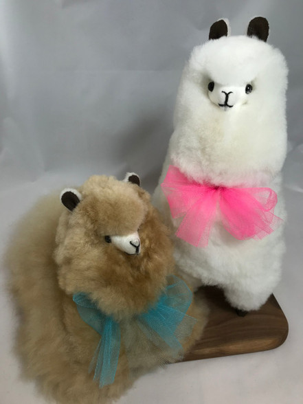 Standing Alpaca pictured with Sitting Alpaca. Natural colors vary.
