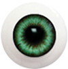 10LD06 10mm Full Round Acrylic Eyes - Dark Green Gray