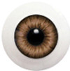 10LD09 10mm Full Round Acrylic Eyes - Hazel
