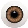 22LD09 22mm Half Round Acrylic Eyes - Hazel