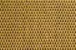 CANCUN TEXTURE-PLANTAIN 10981