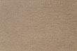 EMBRACE-MUSHROOM 11668