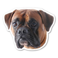 Are you a dog-lover? Do you have a boxer?