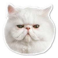 (White) Persian Cat Magnet