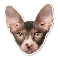 Sphynx Cat Magnet