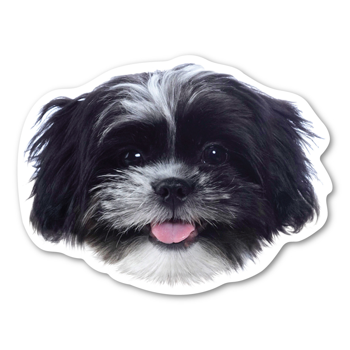 (Black and White) Shih Tzu Magnet | Magnet America