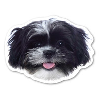 Are you a dog-lover? Do you have a Shih Tzu?
