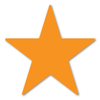 Orange Star Magnet