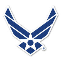Air Force Wings Magnet