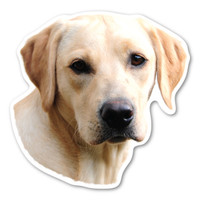 (Yellow) Labrador Retriever Magnet
